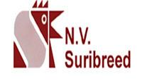 website-logo-16